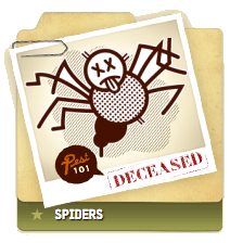 Spiders Deceased