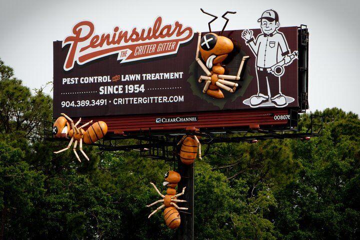 Pest Control Services St. Augustine, FL