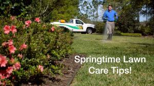 Spring Lawn Care Tips Thumbnail