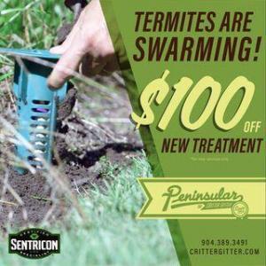 Formosan Termite Treatment